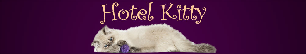 Hotel Kitty